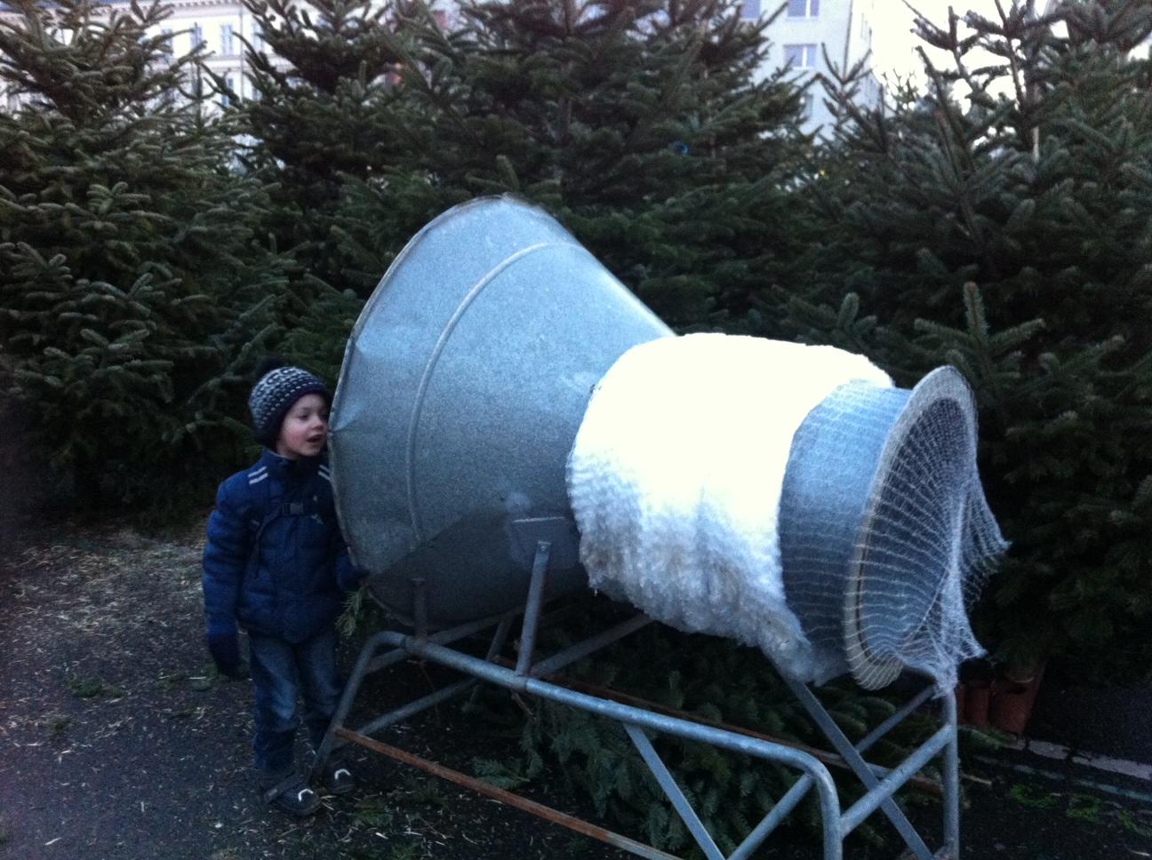weihnachtsbaum der sch nste baum gartenakademie. Black Bedroom Furniture Sets. Home Design Ideas