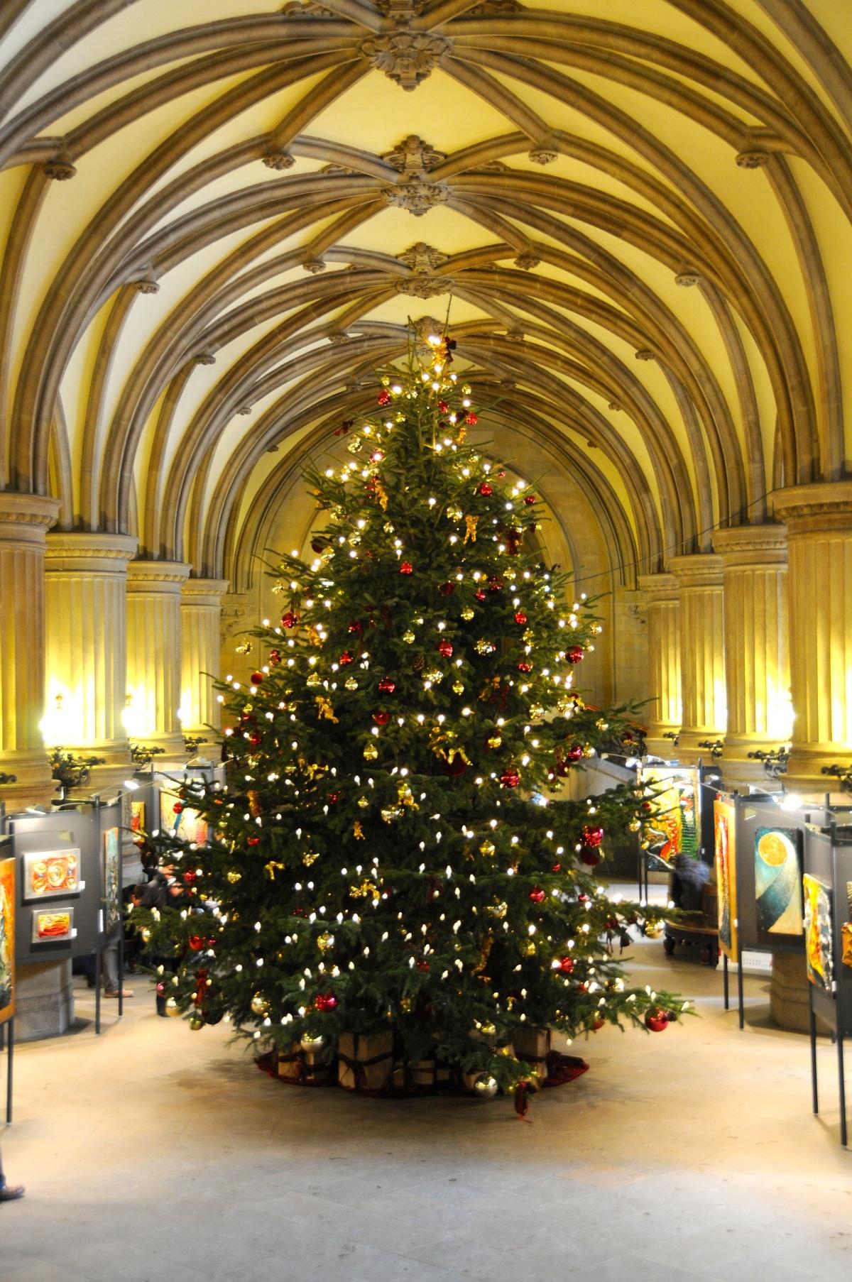 Weihnachtsbaum im Hamburger Rathaus, 2012 © GartenAkademie.com