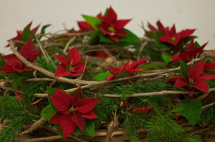 Poinsettia-Wreath2@GardenAcademy.eu